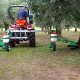 FLEXOMANT-2W being used in an olive grove