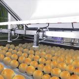 Behandeling van citrusvruchten