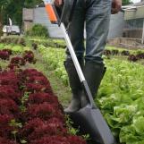 MANKAR-HQ 45 con pantalla pulverizadora girada lateralmente utilizada en la horticultura